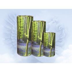 Modelo Urna Biodegradable...